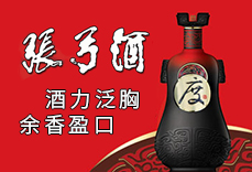 河南省张弓乐虎国际游戏有限公司