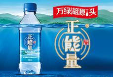 河源正能量更古潭山泉饮料有限公司