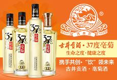 古井�酒亳菊酒