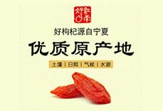 宁夏江南好枸杞产业集团有限责任公司