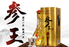 吉林参王酒业有限公司
