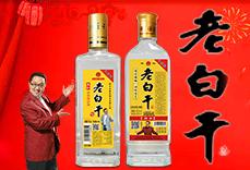 衡水老窖坊酒业有限公司